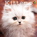 TF Publishing in.Kittensin. 2015 Mini Wall Calendar