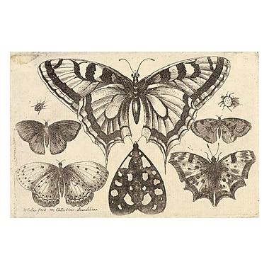 Evive Designs Vintage Butterfly II by Julia Kearney Painting Print