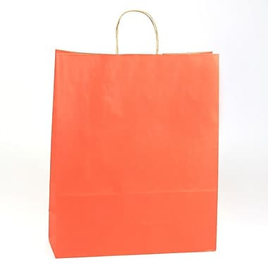 Shamrock Natural Tints with Shadow Stripe Paper Shopper, Zebra, Terra Cotta