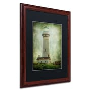 "Trademark Erik Brede ""Pigeon Point ..."" Paper Art, Black Matte W/Wood Frame, 16"" x 20"""