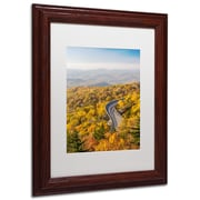 "Trademark Pierre Leclerc ""Blue Ridge Parkway"" Paper Art, White Matte W/Wood Frame, 11"" x 14"""