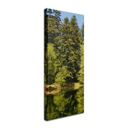 "Trademark Philippe Sainte-Laudy ""Lake Maix"" Part 1 Gallery-Wrapped Canvas Art, 6"" x 12"""