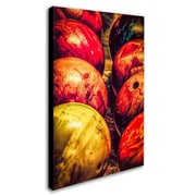 "Trademark Erik Brede ""Balls"" Gallery-Wrapped Canvas Art, 16"" x 24"""