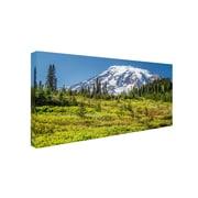 Trademark Pierre Leclerc Mount Rainier Meadow Gallery-Wrapped Canvas Art, 24 x 47