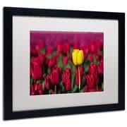 """Trademark Pierre Leclerc """"Yellow Tulip"""" Art, White Matte W/Black Frame, 16"""" x 20"""""""