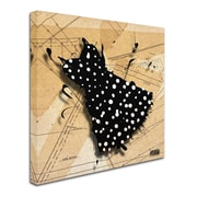 "Trademark Roderick Stevens ""White on Black"" Gallery-Wrapped Canvas Art, 14"" x 14"""