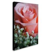 Trademark Monica Fleet Snug Blossom Gallery-Wrapped Canvas Art, 22 x 32