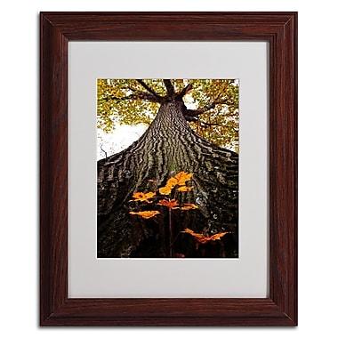Trademark Kurt Shaffer White Matte W/Wood Frame