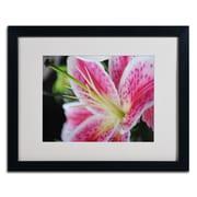 "Trademark Monica Fleet ""Pink Flower"" Art, White Matte W/Black Frame, 16"" x 20"""