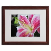 "Trademark Monica Fleet ""Pink Flower"" Art, White Matte W/Wood Frame, 16"" x 20"""