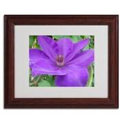 "Trademark Monica Fleet ""Purple Flower"" Art, White Matte W/Wood Frame, 11"" x 14"""