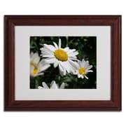 "Trademark Monica Fleet ""Dominating Beauty"" Art, White Matte W/Wood Frame, 11"" x 14"""