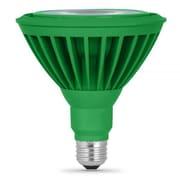 FeitElectric 8W Green 120-Volt LED Light Bulb