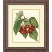 Amanti Art 'Red Cherries' by John Wright Framed Painting Print