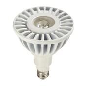 Eco-Story LLC 17W (2700K) LED Light Bulb