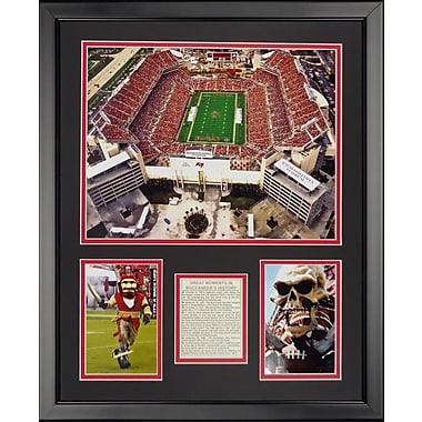 Legends Never Die NFL Tampa Bay Bucaneers - Raymond James Stdm Framed Memorabili