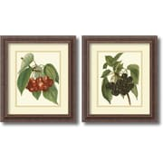 Amanti Art 'Red Cherries, Black Cherries' by John Wright 2 Piece Framed Painting Print Set