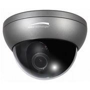 Speco Technologies™ Intensifier3® 2.8-12mm Lens Indoor/Outdoor Dome Camera W/Chameleon Cover