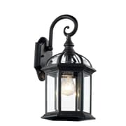 TransGlobe Lighting Outdoor 1 Light Outdoor Wall Lantern; Black