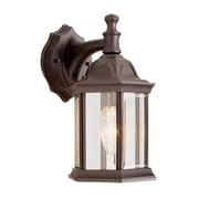 TransGlobe Lighting Outdoor 1 Light Outdoor Wall Lantern; Rust