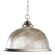 TransGlobe Lighting Back To Basics 1-Light Bowl Pendant; Brushed Nickel