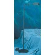Lite Source Pharma Adjustable Arm Floor Lamp; Black