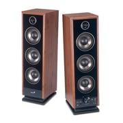 Genius® SPHF2020 V2 60 W Hi-Fi Digital Wooden Speakers, Wood