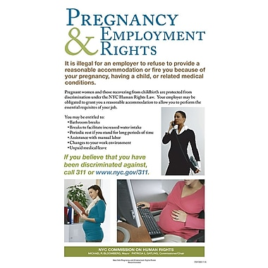 ComplyRight™ New York City Pregnancy & Employment Rights Poster