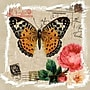 Yosemite Butterfly and Rose I Canvas Art