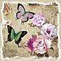 Yosemite Butterflies and Flowers II Canvas Art
