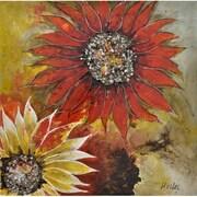 "Yosemite ""Sunburst Flower II"" Canvas Art"