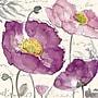 Yosemite Purple Poppies I Canvas Art