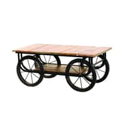"Yosemite 20"" x 49"" x 24"" Solid Mango Wood/Metal Cart Table, Aged Metal"