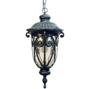 "Yosemite 20.5"" x 9.37"" 1-Light Hanging Light W/Gold Stone Glass Shade, Oil Rubbed Bronze"