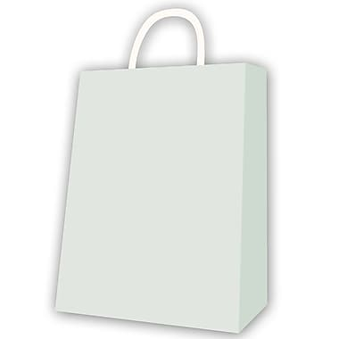 Jumbo Kraft Bag, Silver, 12/Pack