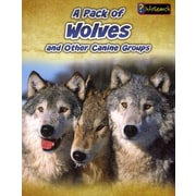 A Pack of Wolves: and Other Canine Groups (Animals in Groups)