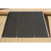 Prairie View Industries Bariatric Panel Ramp; 3' L