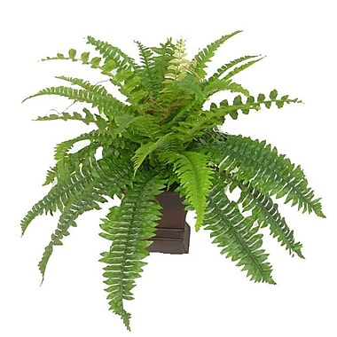 Creative Branch Faux Boston Fern Desk Top Plant in Urn