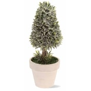Boston International 9.5'' Cone Topiary in Pot Holiday Accent
