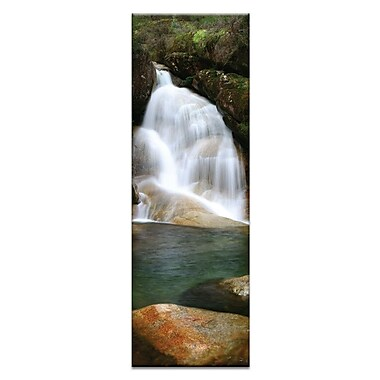 Artist Lane Lady's Bath Falls by Andrew Brown Photographic Print on Canvas