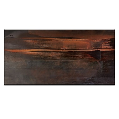 Artist Lane Clarity by Gill Cohn Framed Painting Print on Wrapped Canvas; 20'' H x 40'' W x 1.5'' D