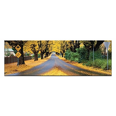 Artist Lane The Avenue by Andrew Brown Photographic Print on Wrapped Canvas in Yellow