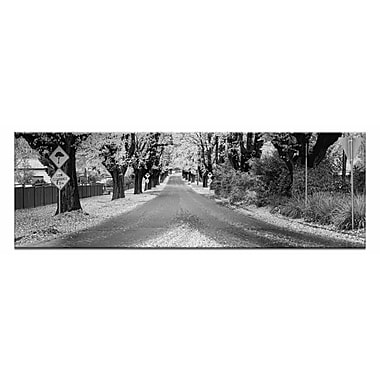 Artist Lane The Avenue by Andrew Brown Photographic Print on Wrapped Canvas in White