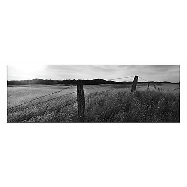Artist Lane Golden Grass by Andrew Brown Framed Photographic Print on Wrapped Canvas in Gray