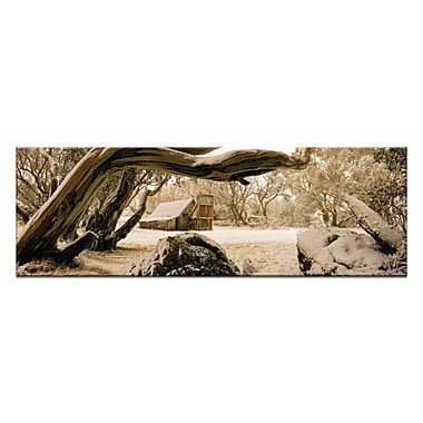 Artist Lane Snow Shelter by Andrew Brown Photographic Print on Wrapped Canvas in Gray