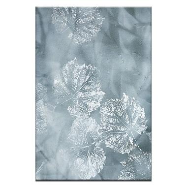 Artist Lane Lightfall by Sally Adams Framed Graphic Art on Wrapped Canvas; 30'' H x 20'' W x 1.5'' D