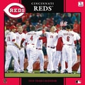 TURNER Cincinnati Reds 12in. x 12in.