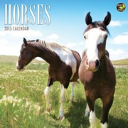 TF Publishing Horses 2015 Wall Calendar