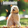 Browntrout Publishers 12in. x 12in. Goldendoodles Wall Calendar