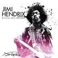 Browntrout Publishers 12in. x 12in. Jimi Hendrix Wall Calendar